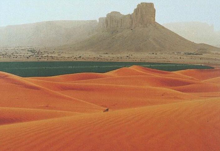 Ørkenen i Saudi-Arabia (Illustrasjonsfoto: Wars, se lisens)