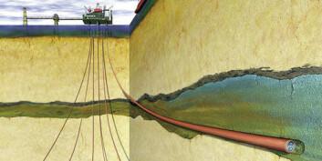 StatoilHydro er blant dem som satser på bioprospektering i sine oljebrønner. (Illustrasjon: StatoilHydro)