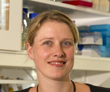 I sitt doktorgradarbeid har stipendiat Anette McLeod har studert den industrielt viktige melkesyrebakterien, Lactobacillus sakei