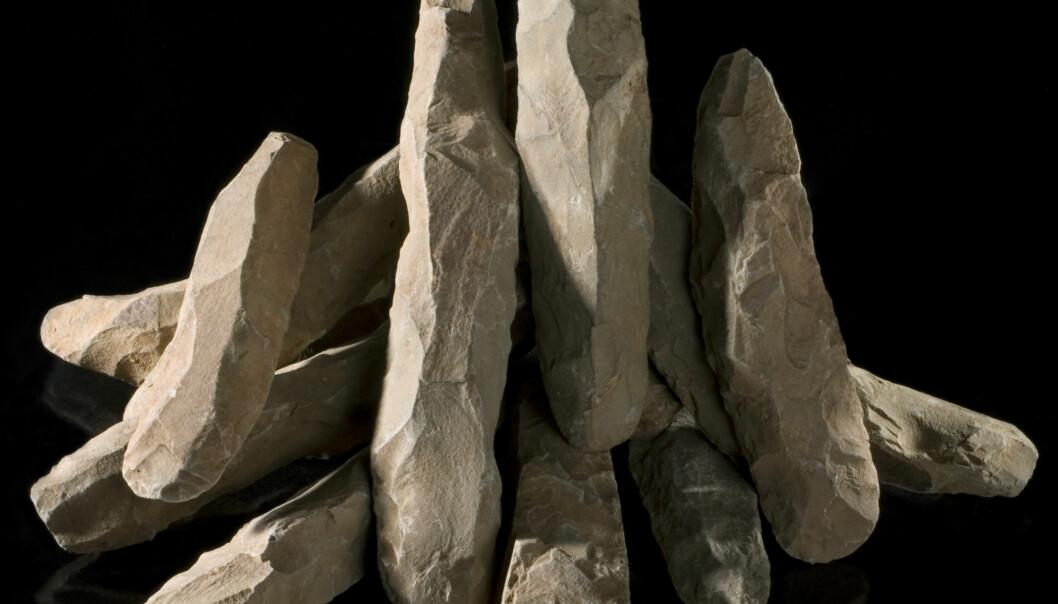 Steinalderkultur under lupen