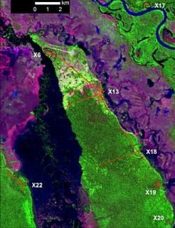 Nordlige bysamfunn. GPS-kartlagte jordvoller er markert med røde streker for veier og torg. (Foto: Science/AAAS)
