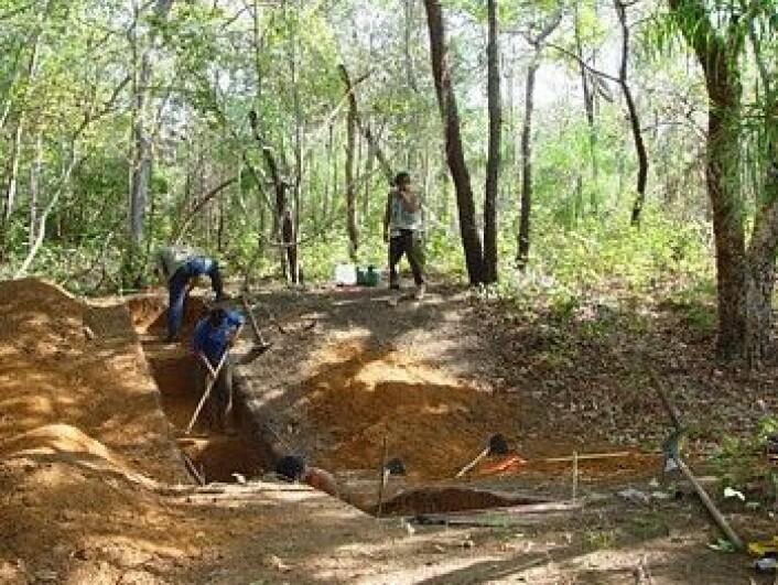 Utgravninger i jordvollene - byenes forsvarsverker. (Foto: Science/AAAS)