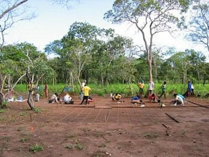 Utgravningene har avdekket et komplekst urbant samfunn. (Foto: Science/AAAS)