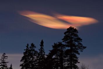 """""""Perlemorskyer er svært vakre, men vitner samtidig om nedbrytingen av ozon som foregår ved diffraksjonen rundt ispartiklene. Dette skjer gjennom konvertering av passive halogen-komponenter som saltsyre (HCl) og klornitrat (ClONO2) til aktive halogen-forbindelser som f.eks. klormonoksid (ClO). Aktive halogen-forbindelser bryter ned ozon. (Foto: Geir Braathen, Verdens Meteorologi-organisasjon)"""""""