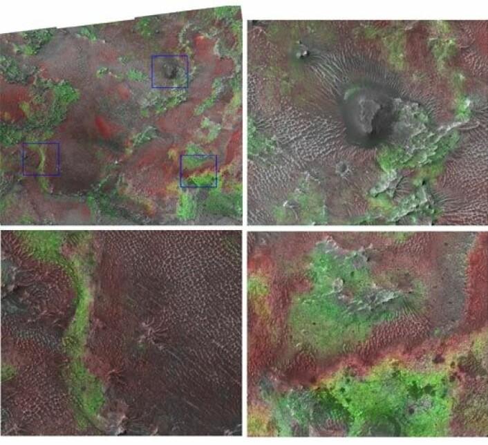 """""""De grønne områdene viser leireforekomster. Dette bildet er en kombinasjon av data fra CRISM og høydefinisjonskameraet ombord på MRO. Illustrasjon: NASA/JPL/JHUAPL/Brown University """""""