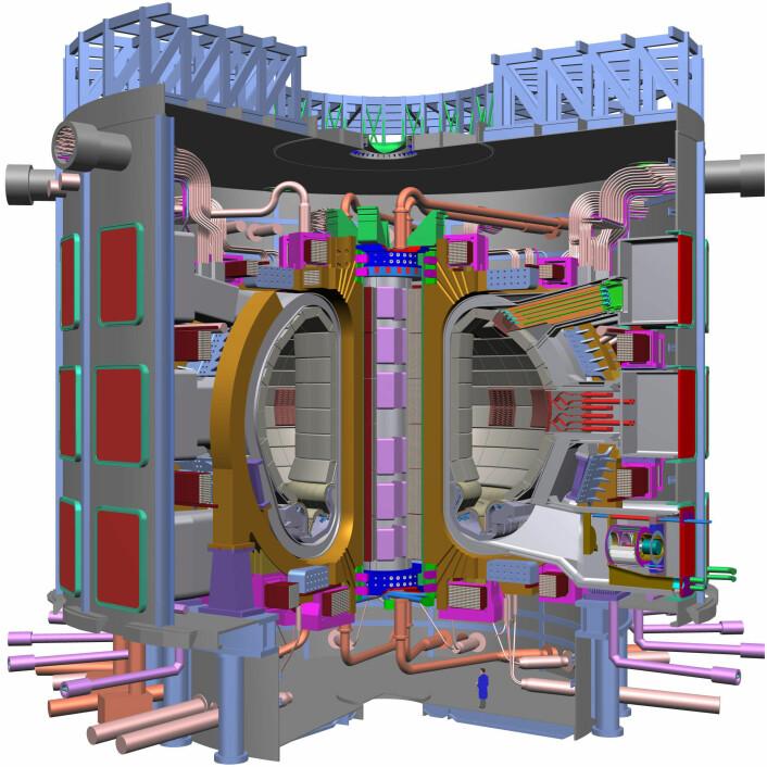 """""""Tverrsnitt av selve plasmabeholderen, eller tokamaken, i ITER. Den vil måle omlag 30 meter i diameter, og hele anlegget skal stå klart i 2018. (Illustrasjon: ITER)"""""""