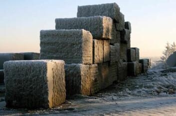 Larvikitt er Norges nasjonalbergart og en betydelig eksportartikkel. Her er blokker fra Lundh labrador gjort klare for eksport.