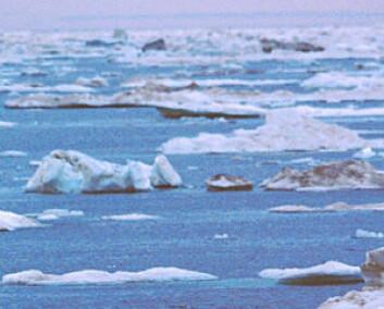 """De senere årene har det vært betydelig smelting havis i Arktis. Selv om isfjell som smelter ikke fører til høyere havnivå, kan dette vitne om økende temperatur."""""""