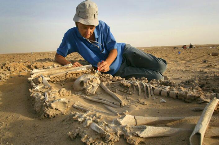 Arkeologen Elena Garcea fra University of Cassino i Italia børster vekk sand fra et skjelett. Garcea brukte potteskår og andre gjenstander til å identifisere de to folkegruppene som en gang bodde ved Gobero. (Foto: Mike Hettwer, Project Exploration)