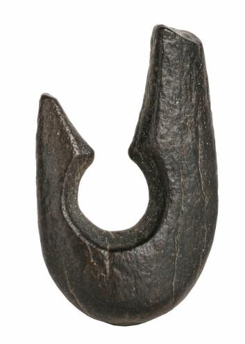 Denne kroken ble antageligvis brukt til å fange svære nilabborer på dypt vann, for omtrent 9 000 år siden. Arkeologene fant også flere titals harpunspisser ved den uttørkede innsjøen ved Gobero. (Foto: Mike Hettwer, Project Exploration)