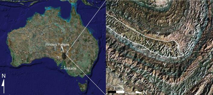 """""""Revet ligger på det som for 650 millioner år siden var Australias østkyst, da resten av kontinentet var dekket av vann. Illustrasjon: University of Melbourne"""""""