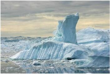 Grønlandsisen regnes som jokeren med hensyn til hvor mye havet vil stige (Foto: istockphoto)