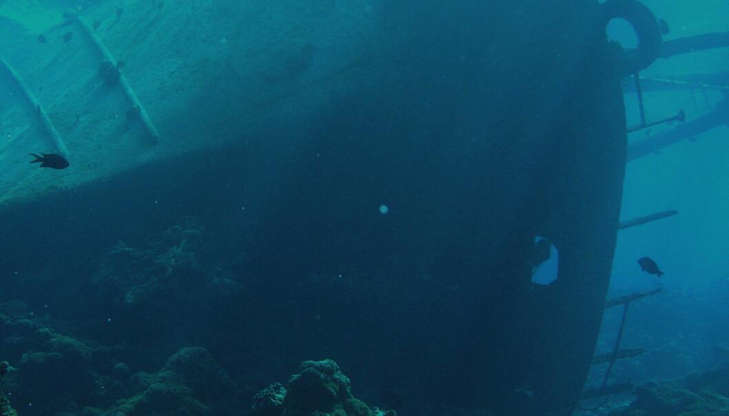 Skipsvrak truer korallrev