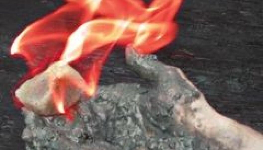 Gasshydrater er isen som brenner. Den kan både være en fremtidig energikilde og en forsterker av global oppvarming. (IFM Geomar)
