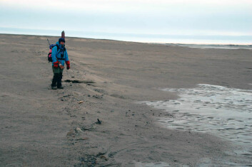 Forsker Astrid Lyså står her i dagens situasjon på Nord-Grønland: Her dannes det bare strandrygger formet av skruis og sjøis som skyves opp på land. Foto: Eiliv Larsen/NGU