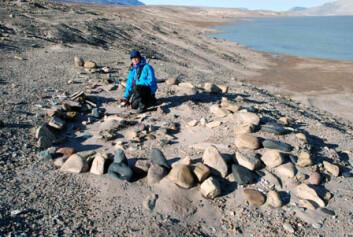 Forsker Astrid Lyså i boplassruinene etter en Independence-I-kulturen på Nord-Grønland i august 2007. De første innvandrerne til disse ugjestmilde strøkene bukket under for i underkant av 4000 år siden, da klimaet igjen ble kaldere. (Foto: Eiliv Larsen/NGU)