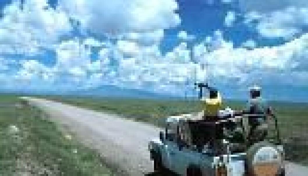"""""""Forskerne peiler etter radiomerket gnu i Serengeti."""""""