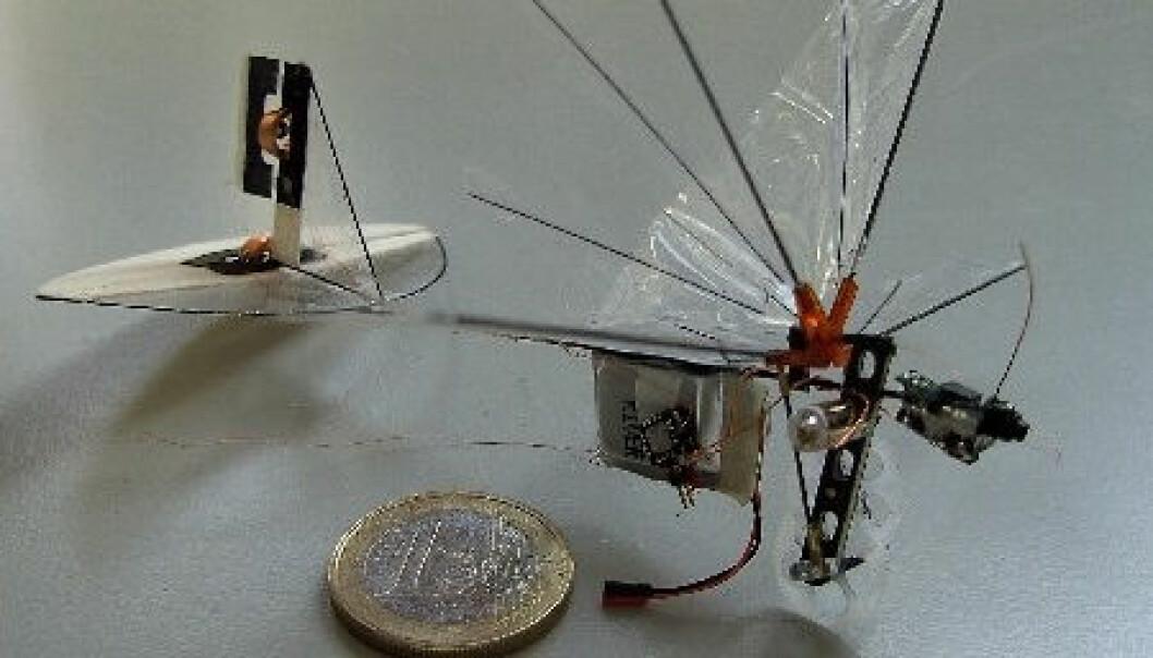 DelFly Micro.(Foto: TU Delft)