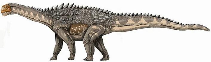 Ampelosaurusen, en pansret titanosaur, levde for 100 - 65 millioner år siden. (Ill. Wikipedia)