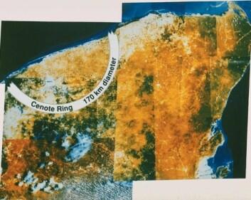 """""""Krateret Chicxulub på Yucatanhalvøya i Mexico er adskillig større enn det over - og er restene etter den hendelsen som antagelig avsluttet dinosaurenes 150 millioner år på jorda."""""""