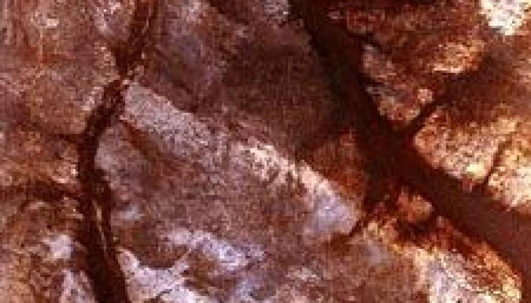 Fulgte elver i Sahara?