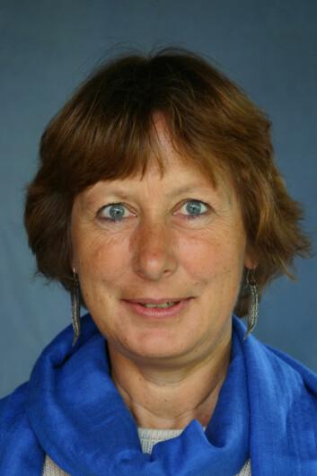 – Holdningsskapende arbeid i samspill med lovbestemmelser virker, forteller forskningsleder Hilde Lidén.