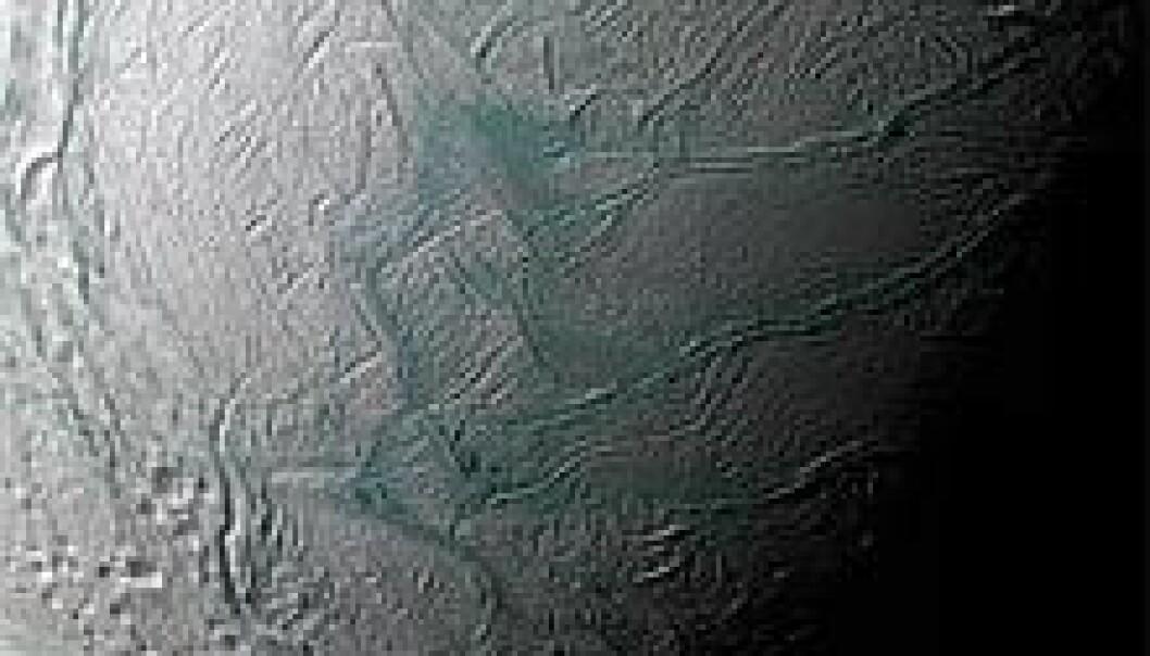 Nærbilder av en ismåne