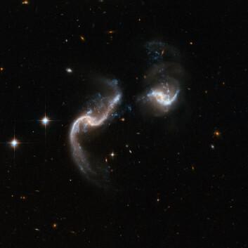 """""""To spiralgalakser er i ferd med å støte sammen. Bildet viser hvordan galaksene er i ferd med å bli deformert av gravitasjonskreftene. De blå, knuteformete punktene er nyfødte stjerner. Galaksen til venstre på bildet avgir intens infrarød stråling, mer enn hundre milliarder ganger kraftigere enn strålingen fra solen. Galaksene er omlag 350 millioner lysår unna. (Foto: NASA/ESA)"""""""