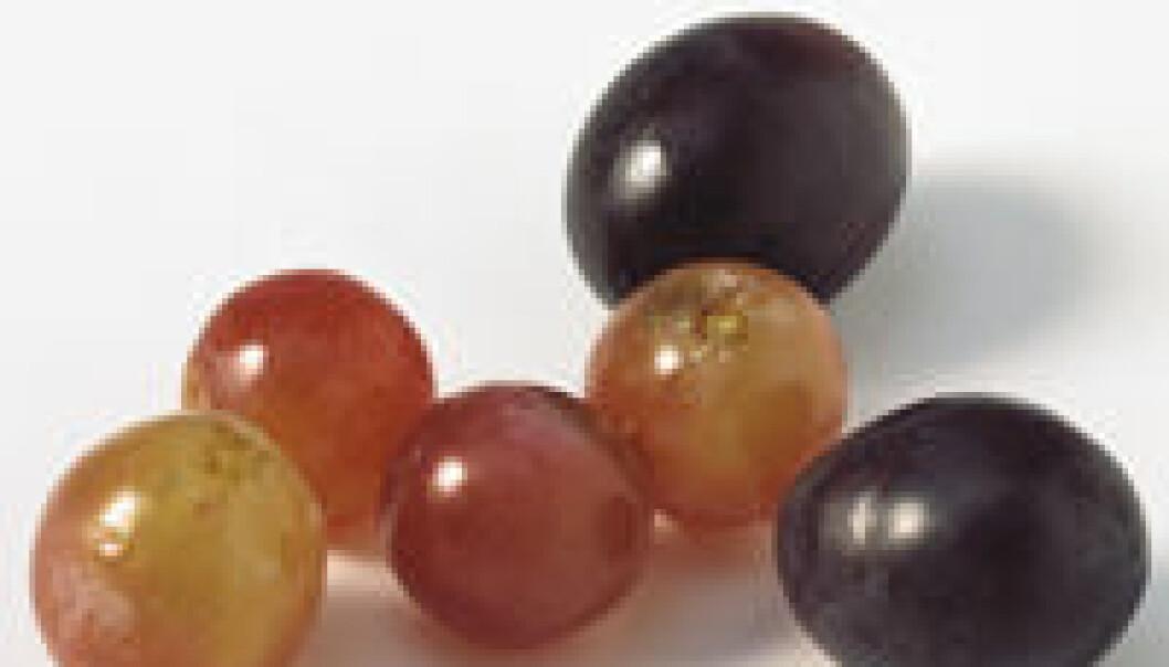 Hjertelige druer