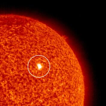 """""""Dette bildet fra SOHO-observatoriet ble tatt 23. september 2008. Det viser den første nye solflekken som er observert siden 10. mai i år. Etter noen dager forsvant solflekken igjen. Forskerne vet ennå ikke om solflekken virkelig markerte starten på en ny solsyklus.(Foto: NASA/JPL-Caltech)"""""""