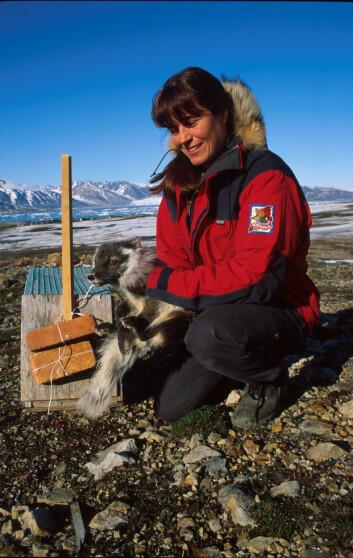 """Forsker Eva Fuglei ved Norsk Polarinstitutt er en av deltakerne i Polarårprosjektet """"Arctic Predators""""."""