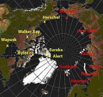 """Feltlokalitetene til Polarårprosjektet """"Arctic Predators""""."""