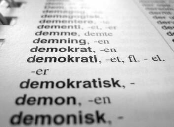 Det er en klar sammenheng mellom gode kunnskaper i språk og deltakelse i demokrati. Foto: Tomas Rolland