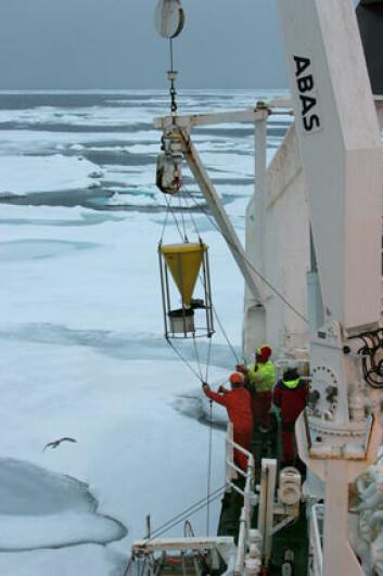 Forskerne henter inn datautstyr i Rijpfjorden på Nordaustlandet, Svalbard. (Foto: Geir Johnsen)