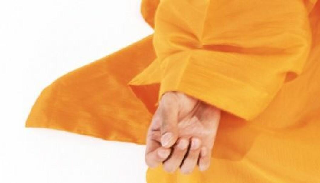 Vil ha buddhistisk økonomi