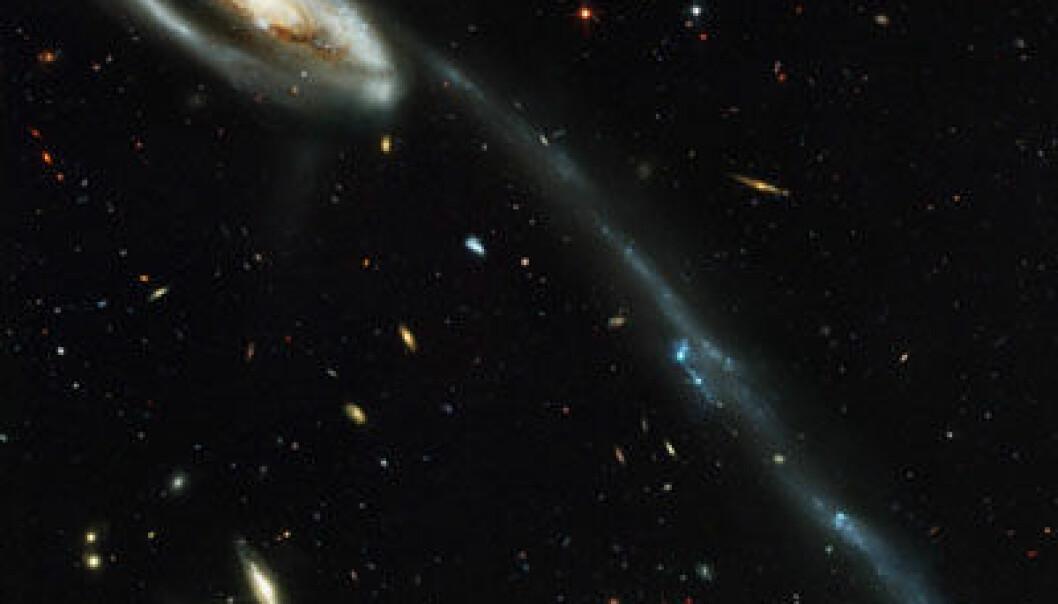 """Foto: NASA, H. Ford (JHU), G. Illingworth (UCSC/LO), M. Clampin (STScl), G. Hartig (STScl) og ACS Science Team - STScl-PRC02-11a."""