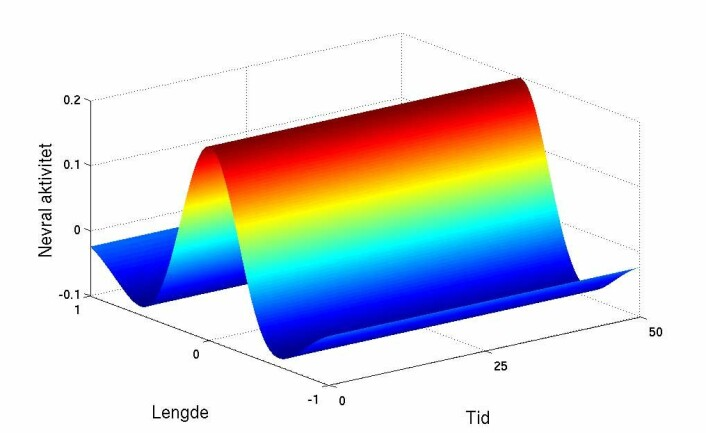 """En jevn kurve som dette viser at hukommelsen fungerer. Grafikken viser at aktiviteten i hjernebarken er stabil i forhold til tiden."""