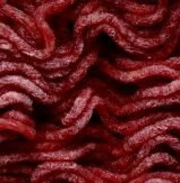 """""""Cellekultur dyrket i laboratoriet kan kanskje blandes inn i kjøttfarse. (Illustrasjonsfoto)"""""""