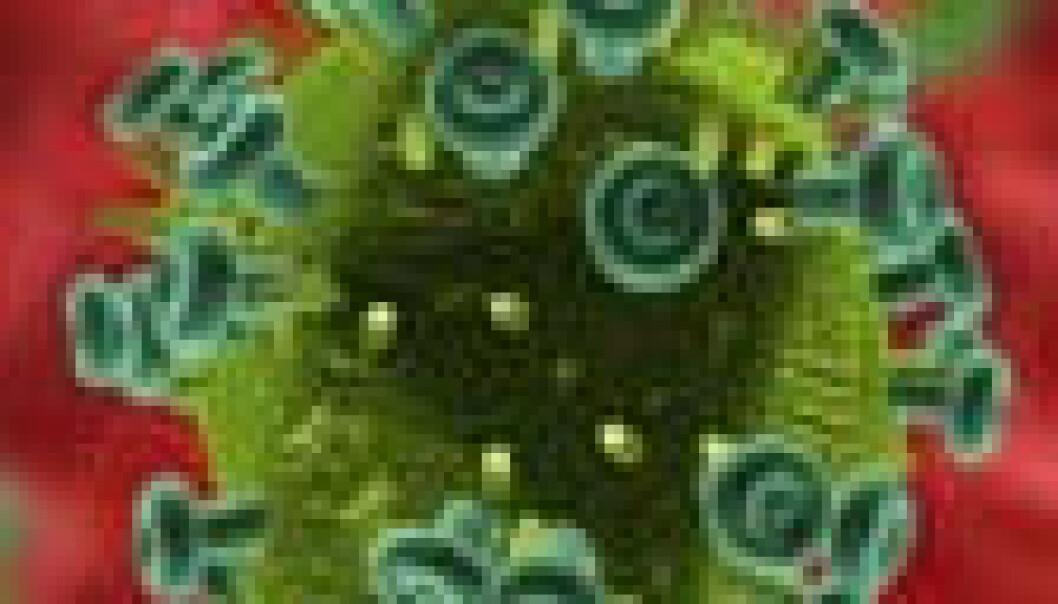 Vil løyse HIV-gåter med klona virus