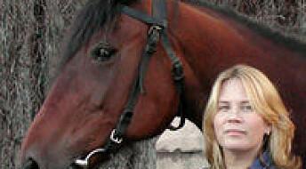 Hvorfor hester får løse biter i ledd