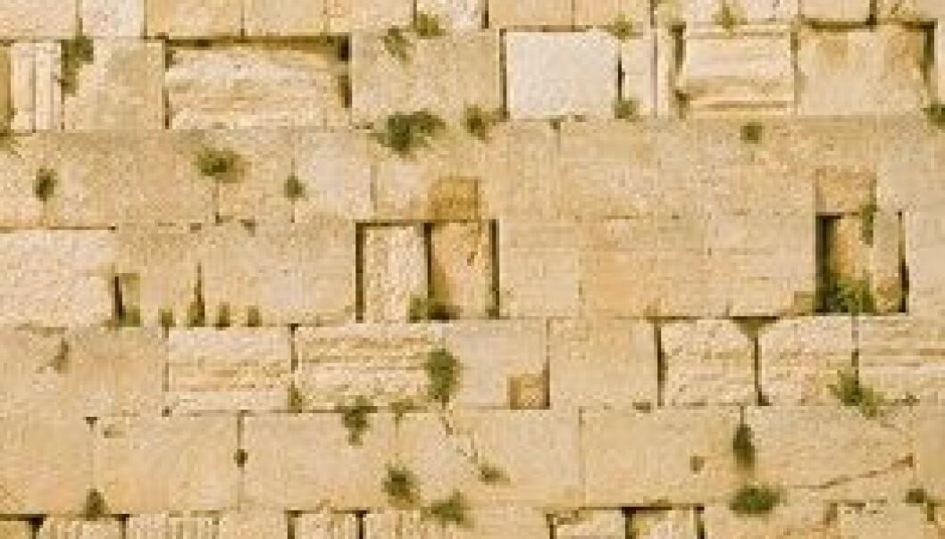 """""""Jøder ber ved klagemuren"""""""