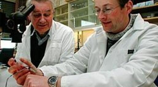 Genterapi med norsk patent