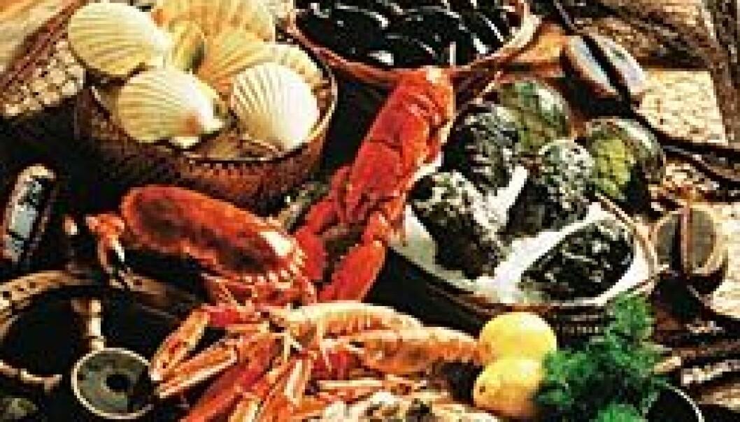 """""""STORE MULIGHETER: Den marine sektoren, med både fiske, oppdrett og tilstøtende næringer, kan bidra til å skape ny livskraft i en rekke samfunn langs norskekysten. (Foto: Eksportutvalget for fisk)"""""""
