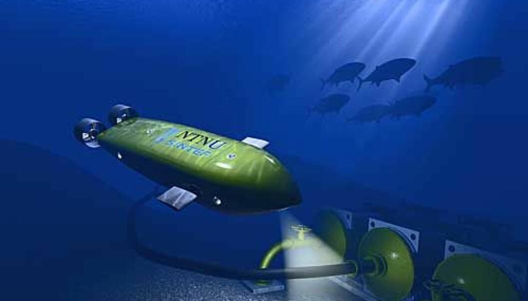 """""""Havets lille vaktmester. Munin kan gjøre det lettere å avsløre tjuvfiskere. (Illustrasjon: Thomas Krogstad, NTNU)"""""""