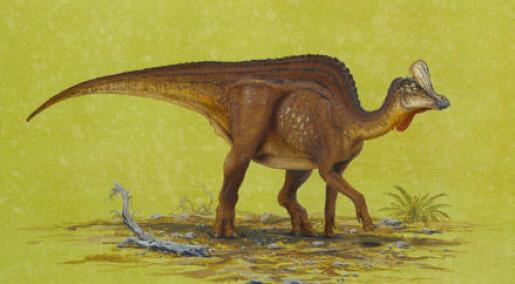 Ny nebbete meksikansk dinosaur