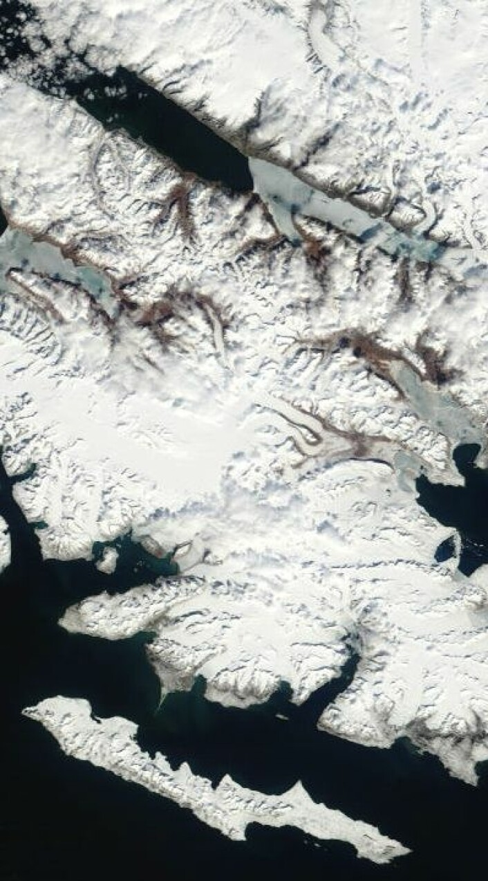Ny Ålesund og traktene deromkring på Svalbard, sett fra satellitt 7. juni. Lite is nå i Wijdefjorden. (Nord er opp til venstre). (Foto: (NASA Terra MODIS))