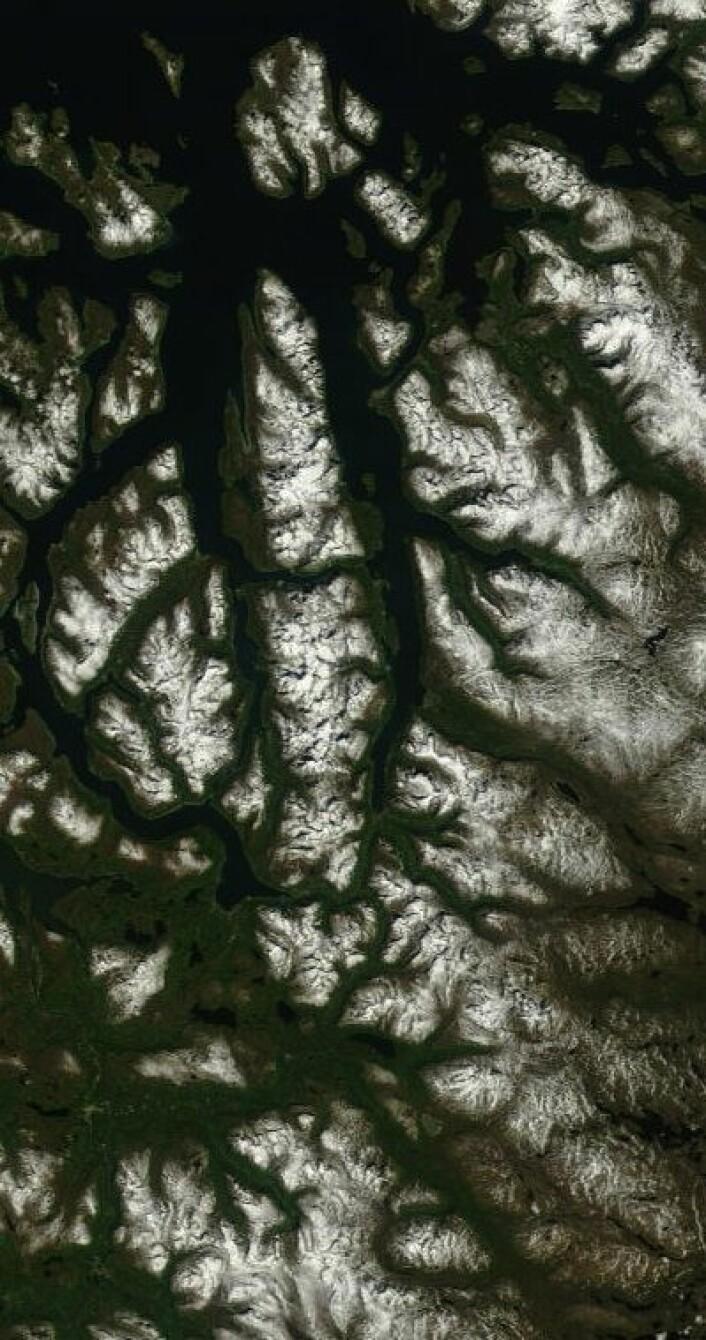 Fagert er landet. Slik så det ut i Troms da NASAs satellitt Terra passerte 13. juni. (Foto: (NASA Terra MODIS))