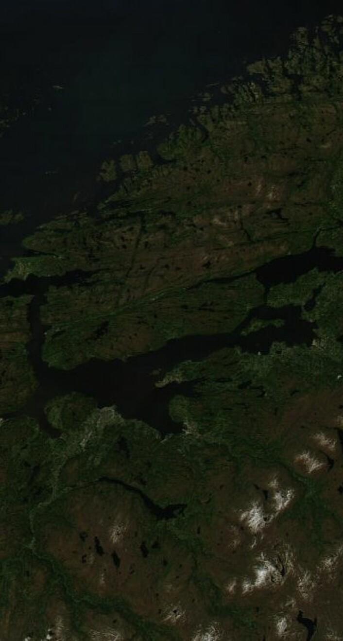 Onsdag 12. juni var det trønderne som hadde godværet. Slik så det ut der da NASAs satellitt Aqua passerte etter lunsj. (Foto: (NASA Aqua MODIS))