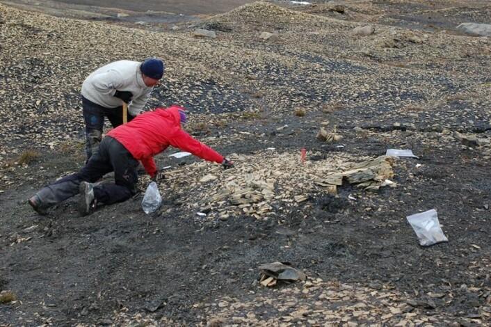 Etter et par timer står vi igjen med selve godbiten, men Pat og Jørn får seg dessverre en mindre nedtur. (Foto: Erik Tunstad)