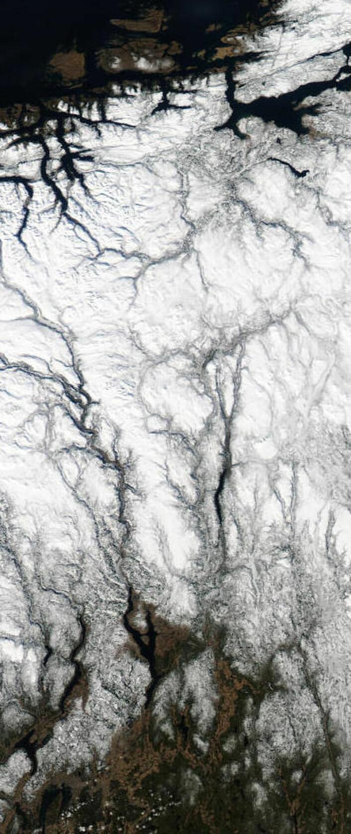 Sør-Norge i vårsol, sett fra NASA-satellitten Aqua tirsdag 25. mars 2014. (Oppløsningen er redusert med 2x for å få plass til et bredere spor). (Foto: (NASA Aqua MODIS))